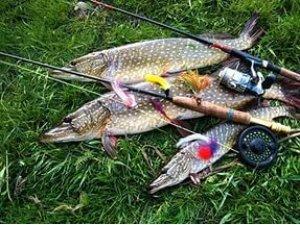 Ловля щуки – получите удовольствие от осенней рыбалки
