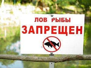 Запрет, правила ловли рыбы и раков в Беларуси (2019 год)